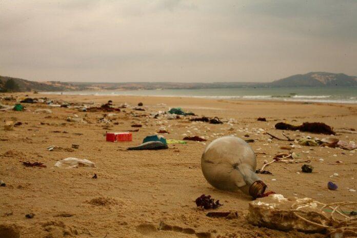bioplastic degrade, bioplastic degrade in the ocean, Bioplastic recycling, biodegradable in landfill, landfill biodegradable, how long does biodegradable waste take to break down