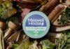 compostable coffee pods packaging, 100% compostable coffee pods, alternative to the single-serve pods, Maxwell house